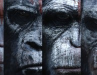 dawn-of-planet-of-apes_2